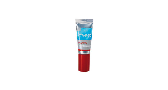 Dynamic Carbon Montagepaste Tube 20 g